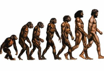 Мектеп бағдарламасынан Дарвин теориясы алынып тасталды